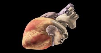irmcardiaqueslider
