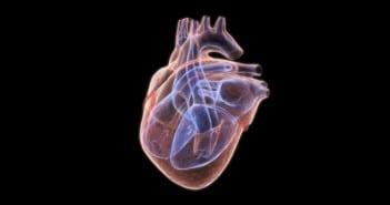 Nouvelles techniques d'imagerie dans l'évaluation du ventricule droit
