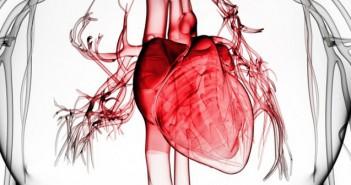 insuffisancecardiaque