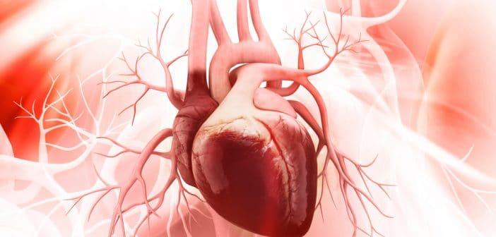 Taille et fonction de l'oreillette gauche dans les cardiomyopathies