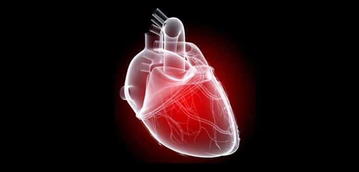 Hypotension orthostatique - cardiologie