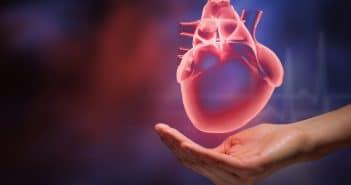 Valvulopathies Archives - Page 4 sur 10 - Réalités Cardiologiques